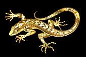 Jeweler, golden, shiny lizard on black background.