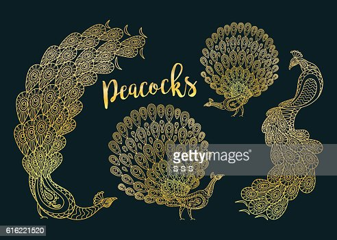 Golden peacocks set on dark turqiouse : Vector Art