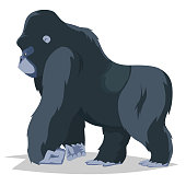 Gorilla walking side view