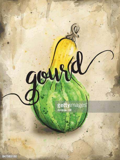Gourd Squash Painted in Watercolor on Rustic Brown Background. Vector EPS10