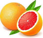 Grapefruit and slice isolated on white photo-realistic vector illustration