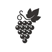 Vector illustration of simple black with whine grape isolated on white.