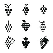 Grapes vector icons. Simple illustration set of 9 grapes elements, editable icons, can be used in logo, UI and web design