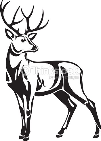 Graphic Black Illustration Drawing Of Decorative Wild Deer