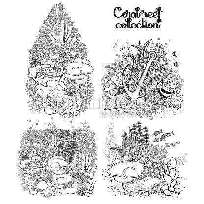Gráfico Coral Arrecife Colección Arte vectorial   Thinkstock