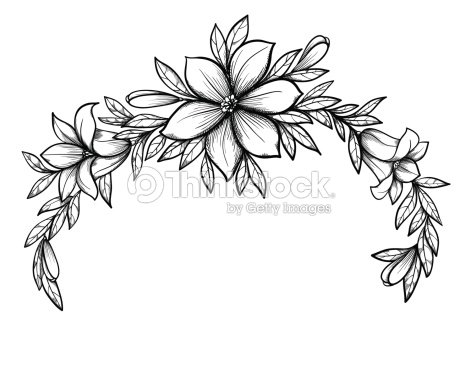 Graphic Drawing Lily Branch With Leaves And Buds Of Flowers Vector Art