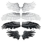 Graphic collection of wings drawn in line art style. Vector art in black and white colors. Coloring book page design for adults and kids