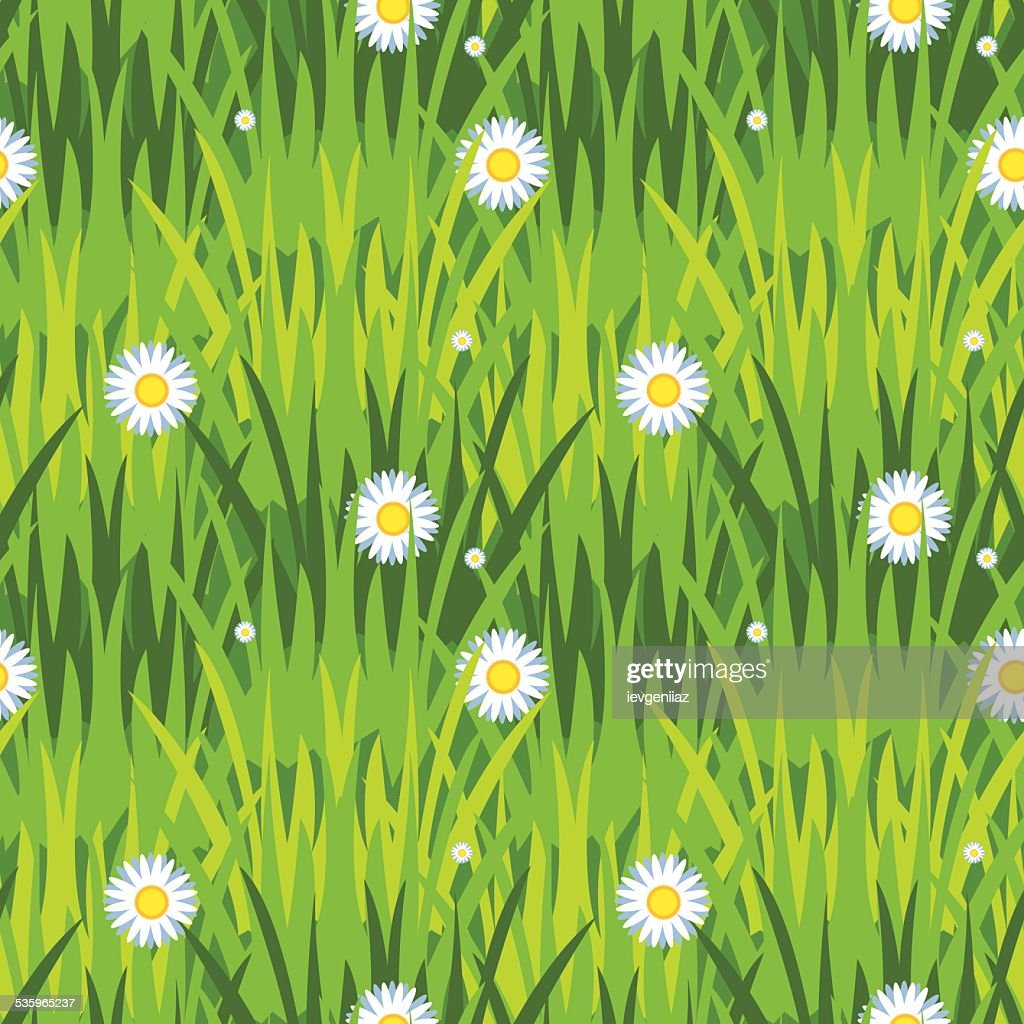 grass and flowers : Vector Art