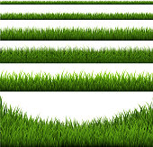 Grass Border Set, Vector Illustration