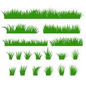 Grass Borders Set, Green Tufts plants Horizontal row, Bush of various shapes. Natural, organic, bio, eco design elemehns. Vector Illustration