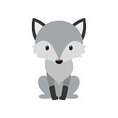 Gray wolf. Cartoon, wolf grey the nature of the character. Vector illustration.