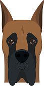 Great Dane dog isolated on white background vector illustration