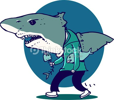 funny cartoon great white shark