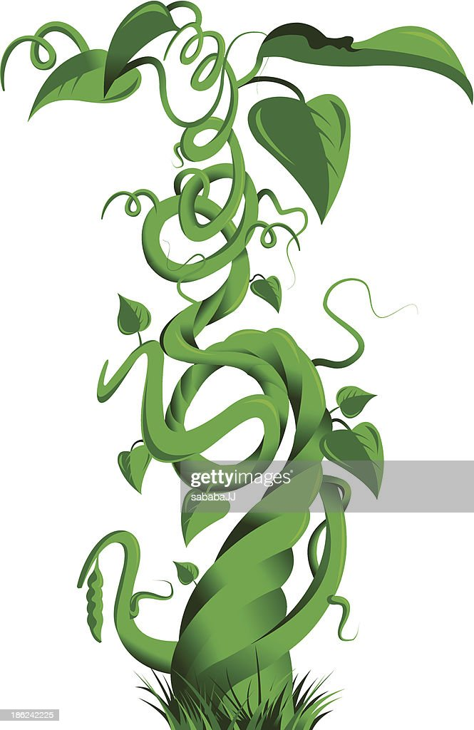 green beanstalk vector art thinkstock rh thinkstockphotos co uk Plant Clip Art Cow Clip Art