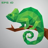 A green chameleon is sitting on a branch and looking. Thoughtful and lazy wild life. Low poly reptile on a white background. Vector illustration.