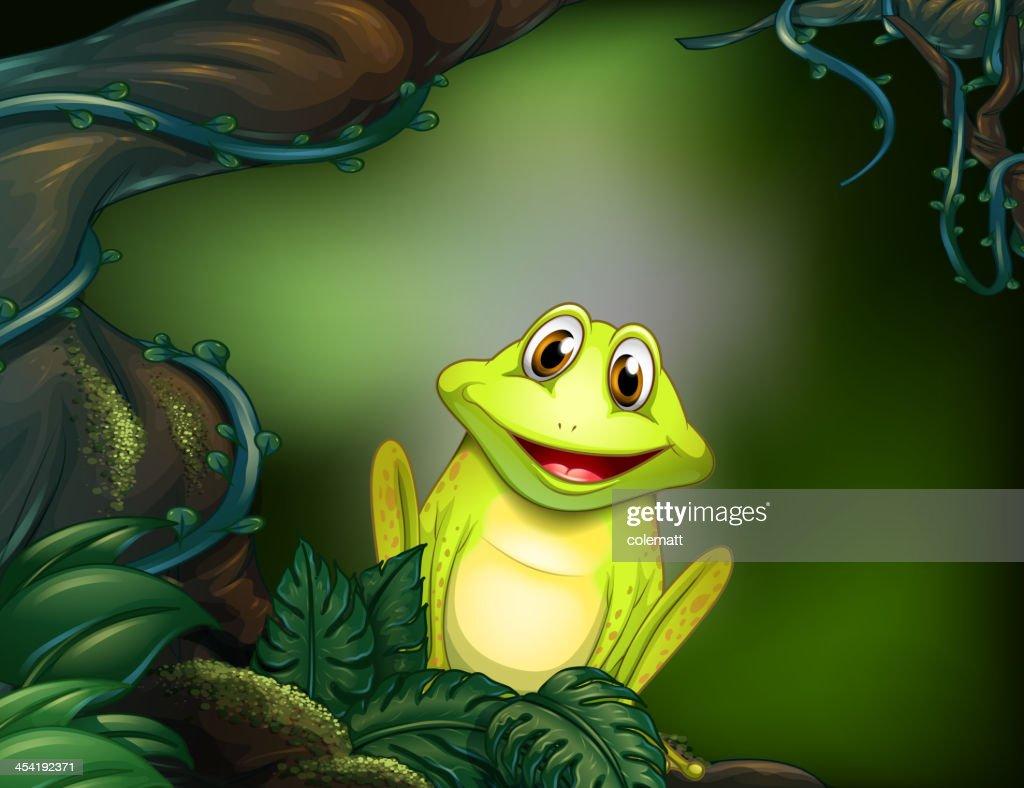 Grünen Frosch in den Dschungel : Vektorgrafik