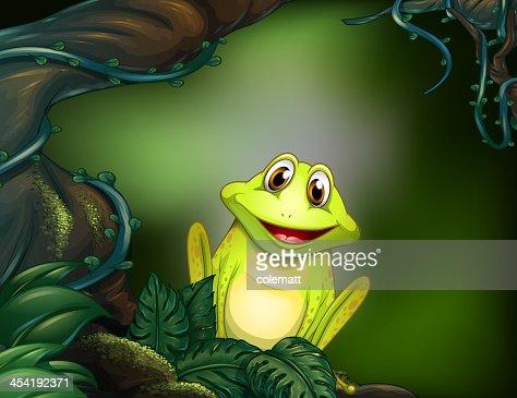 Raganella verde nella giungla : Arte vettoriale