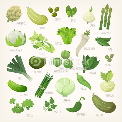 Green fruit and vegetables : stock vector