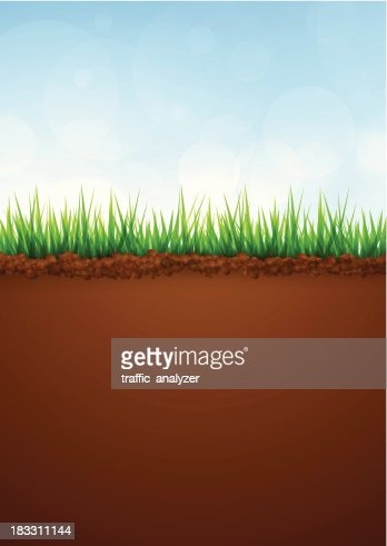 Green Grass And Soil Vector Art | Getty Images