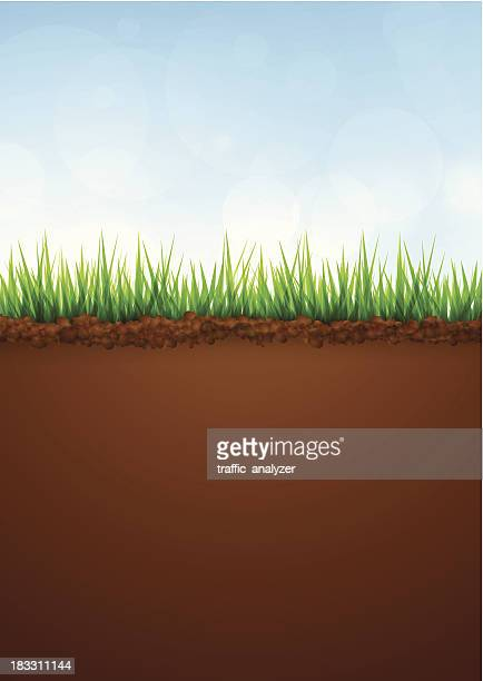 Gr s bildbanker med illustrationer och tecknat getty images for Soil and green