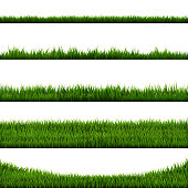 Green Grass Border Big Collection, Vector Illustration