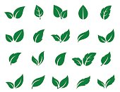 green leaf icons set on white background