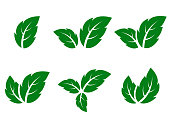 abstract green leaf icons set on white background
