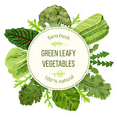 Green leafy vegetables, Round label, text, copt space. farm fresh Spinach, Dandelion, broccoli, Romaine Lettuce, kale, Collard. Can be used for cooking, bakery, tags labels textile cards icons web