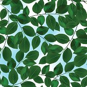 Green leaves canopy and sky in a seamless pattern.