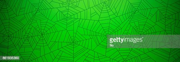 Green Spider Web Background