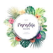 Green summer tropical background with exotic palm leaves and hibiscus flowers. Floral background, vector illustration.