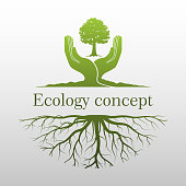 green tree logo on human hand with root. nature icon and ecology concept, vector illustration