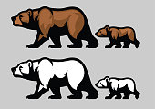 vector of grizzly bear and her cubs