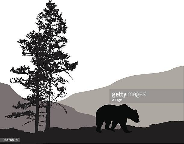 Grizzly Country Vector Silhouette