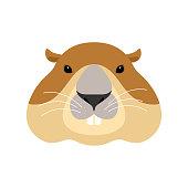 Groundhog face. Woodchuck head. Marmot. Vector illustration