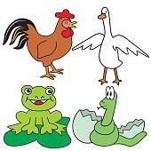 Group of animals, rooster, goose, frog and snake. Vector icon.