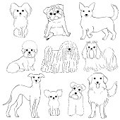 group of small dogs hand drawn line art.
