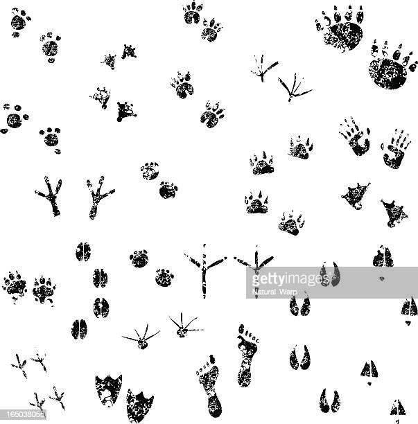 Grunge Footprints set  01