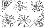 Halloween spider web isolated on white background. Hector venom cobweb set. Vector illustration