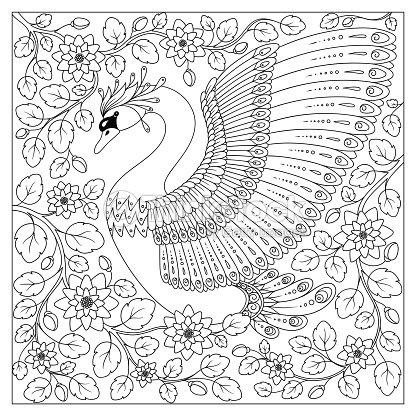 De La Mano Con El Dibujo Artística Cisne En Flores Para Adultos Para ...