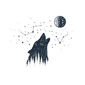 Hand drawn howling wolf and constellations textured vector illustrations.