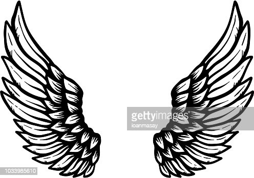 Hand drawn eagle wings illustration isolated on white background. Design element for poster, card, banner, sign, emblem, t shirt. : stock vector