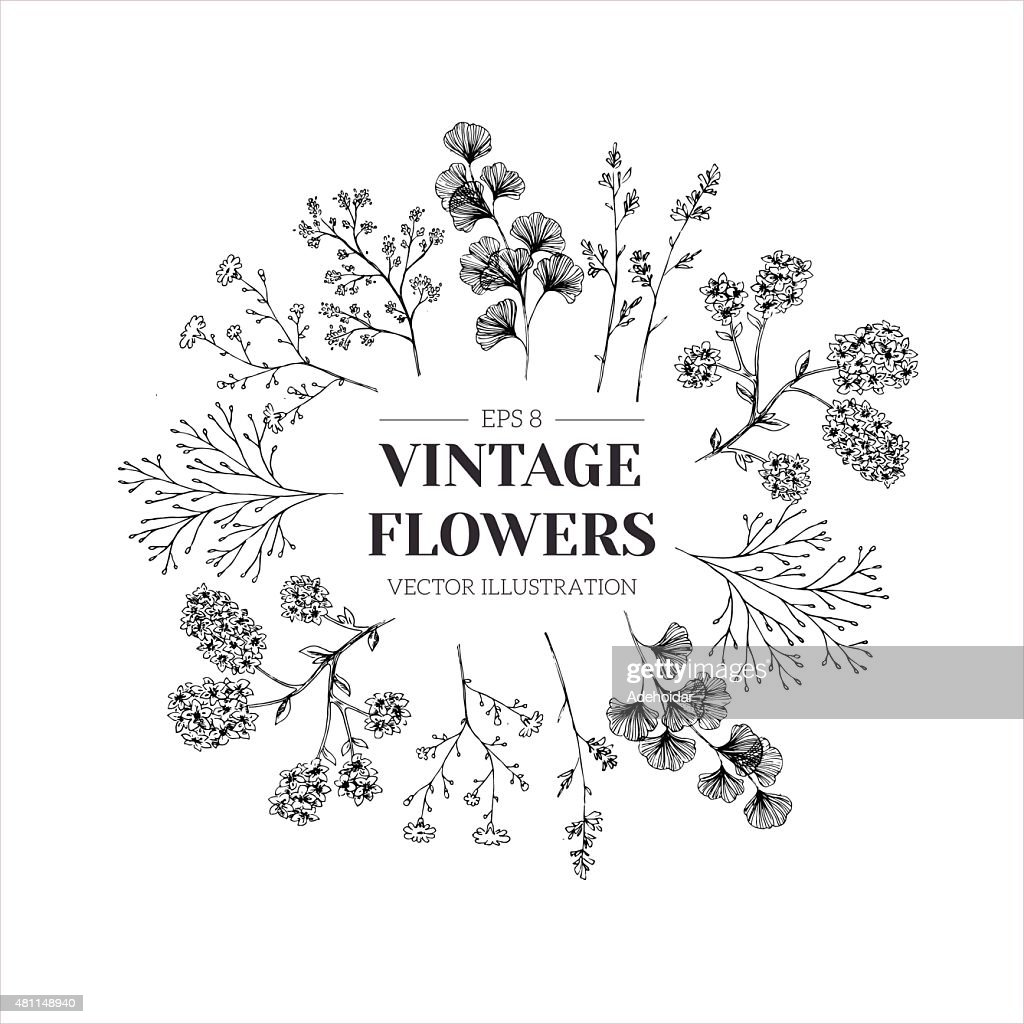 Hand drawn herb composition. Floral template. Vector illustration