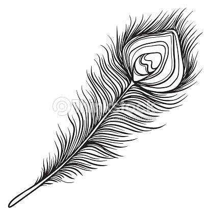 Hand Drawn Peacock Black Feather Vector Art | Thinkstock