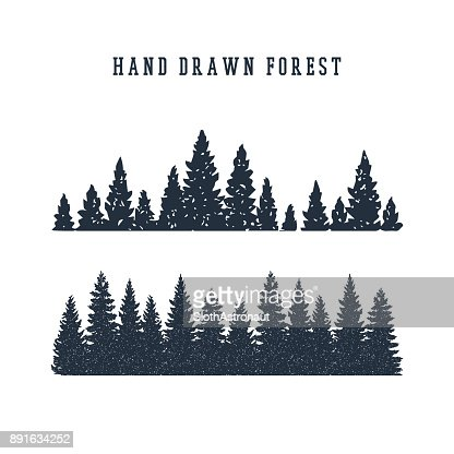 Hand drawn pine forest vector illustration. : Vector Art
