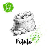 Hand drawn sketch style illustration of ripe potatoes in burlap bag. Farm fresh vector illustration poster. EPS10 + JPEG preview.