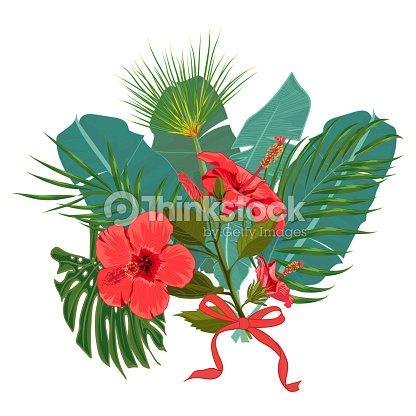 Hojas De Palma Tropical Dibujado Mano Y Ramo De Flores Exoticas De