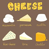 Hand drawn vector illustration of six types of cheese