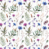 Hand drawn watercolor summer wildflowers pattern including cornflower, thistle, willow branch, bell and feathers isolated on white background. Realistic botanical illustration in trendy vintage style.