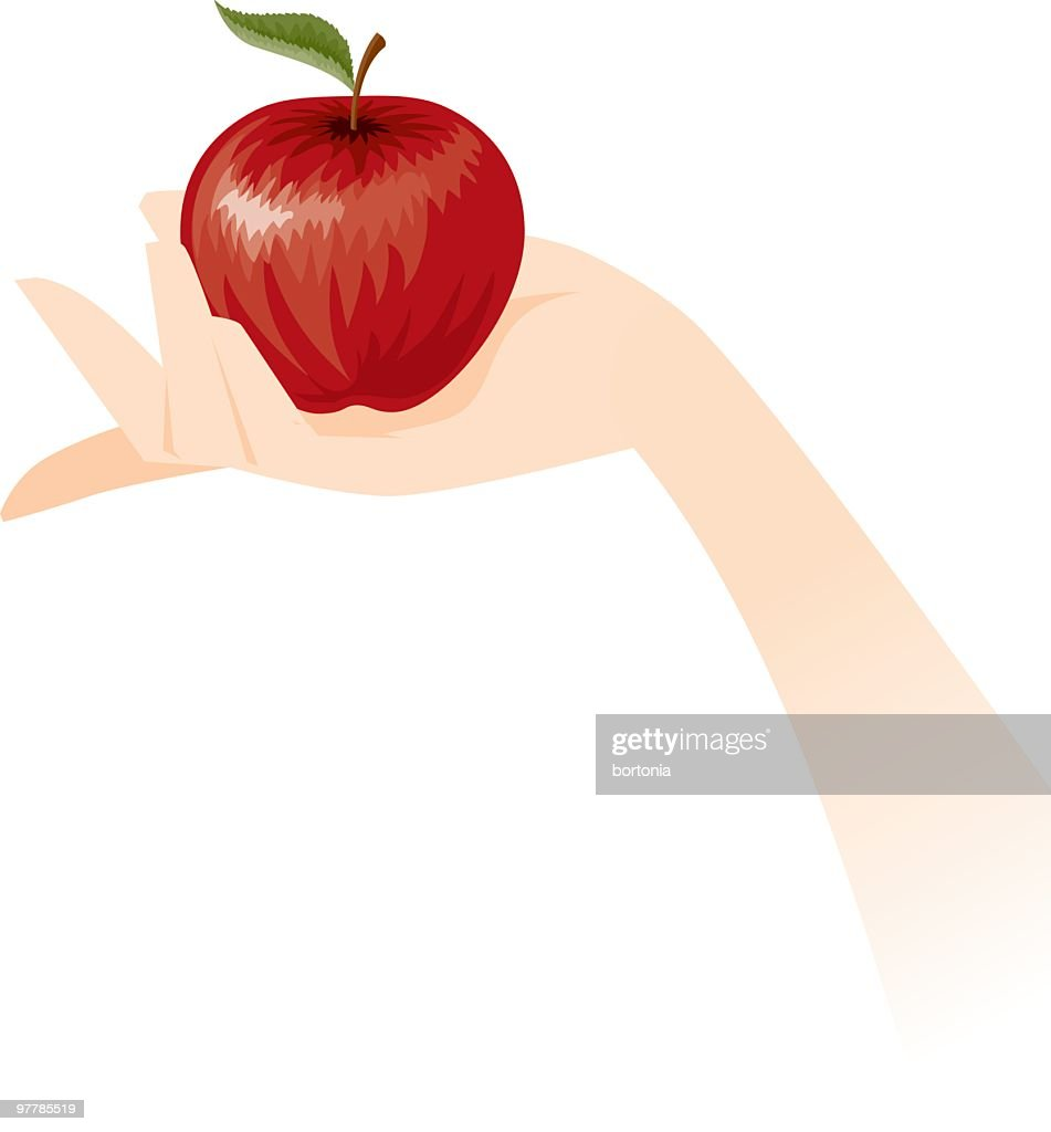 Hand Holding an Apple : Vector Art